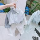 shirt Light blue grey Meiyaya male 80cm,90cm,100cm,110cm,120cm,130cm,140cm spring and autumn Long sleeves Korean version Solid color Pure cotton (100% cotton content) Lapel and pointed collar Cotton 100% CJ23