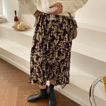 skirt Winter 2020 M, L Black, jujube Mid length dress commute Natural waist Pleated skirt Abstract pattern Type A 18-24 years old 30% and below polyester fiber Korean version