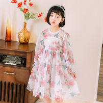 Dress Light green with red flowers on a white background female Other / other 110cm,120cm,130cm,140cm,150cm Other 100% spring and autumn princess Long sleeves Broken flowers other A-line skirt T22040 Class B Three, four, five, six, seven, eight, nine Chinese Mainland