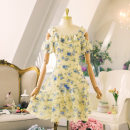 Dress Summer 2020 yellow S,M,L Middle-skirt singleton  Sleeveless commute High waist Decor zipper Cake skirt Lotus leaf sleeve camisole 18-24 years old Type A The princess's confession lady Chiffon