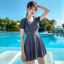 one piece  Tongtong swimsuit XXL,XL,L,M 1231-1,1231-2 Skirt one piece With chest pad without steel support Polyester, spandex, nylon female Short sleeve Casual swimsuit stripe