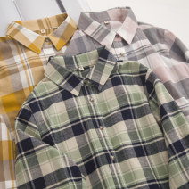 shirt Yellow, green, gouache S,M,L,XL cotton 96% and above Long sleeves Single row multi button lattice