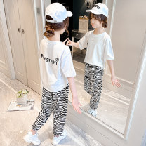 suit Other / other Black, red 110cm,120cm,130cm,140cm,150cm,160cm,170cm female summer leisure time Short sleeve + pants 2 pieces Thin money There are models in the real shooting stripe cotton Class B 7, 8, 14, 3, 6, 2, 13, 11, 5, 4, 10, 9, 12 Chinese Mainland Zhejiang Province Huzhou City