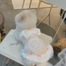 Pet clothing / raincoat currency Dress XS,S,M,L,XL Cherry bear princess White suit with hairpin, white skirt, bow hairpin