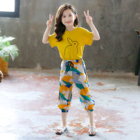 suit Jin yalitong 110cm,120cm,130cm,140cm,150cm,160cm,165cm,170cm,175cm female summer leisure time Short sleeve + pants 2 pieces Thin money There are models in the real shooting Socket nothing Cartoon animation other children Giving presents at school Class B Other 100%