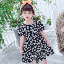 Dress black female Other / other Size 90 (height 78-87cm, age 1-2), size 100 (height 88-97cm, age 2-3), Size 110 (height 98-107cm, age 3-4), Size 120 (height 108-117cm, age 4-5), Size 130 (height 118-130cm, age 5-6) Other 100% summer princess Short sleeve Solid color cotton Lotus leaf edge Class B