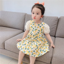Dress White Floral Short Sleeve Dress female Other / other Tag 100 is suitable for 95cm, tag 110 is suitable for 105cm, tag 120 is suitable for 115cm, tag 130 is suitable for 125cm, tag 140 is suitable for 135cm Cotton 100% summer princess Short sleeve Broken flowers Pure cotton (100% cotton content)
