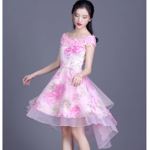 Dress Summer 2020 Petals pink S,M,L,XL,2XL,3XL,4XL Middle-skirt singleton  Sleeveless commute Crew neck middle-waisted Solid color zipper Princess Dress other Others 30-34 years old Type A Love with pearls and flowers lady 91% (inclusive) - 95% (inclusive) Lace polyester fiber
