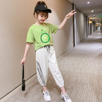 suit Other / other White, green, green + black pants 110cm,120cm,130cm,140cm,150cm,160cm,170cm female summer leisure time Short sleeve + pants 2 pieces Thin money There are models in the real shooting Socket nothing Cartoon animation cotton Class B