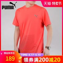 Sports T-shirt Puma / puma 165/88A/XS 170/92A/S 175/96A/M 180/100A/L 185/104A/XL 190/108A/2XL Short sleeve male Crew neck routine Moisture absorption, perspiration and ventilation Summer 2021 Brand logo Sports & Leisure Sports Life Series polyester fiber yes