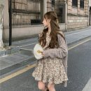 Dress Winter 2020 Apricot Average size longuette singleton  Long sleeves commute Crew neck Socket routine 18-24 years old Korean version 51% (inclusive) - 70% (inclusive) polyester fiber