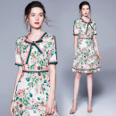 Dress Summer 2020 Contrast printing side zipper with pink green stripe M,L,XL,XXL Middle-skirt singleton  Short sleeve street middle-waisted Decor zipper A-line skirt routine Others 25-29 years old Type A 51% (inclusive) - 70% (inclusive) other polyester fiber Europe and America