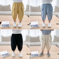 trousers McCarthy male 80cm,90cm,100cm,110cm,120cm,130cm summer Cropped Trousers leisure time There are models in the real shooting Casual pants Leather belt middle-waisted cotton Open crotch 12 months, 9 months, 18 months, 2 years old, 3 years old, 4 years old, 5 years old, 6 years old, 7 years old