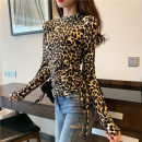 T-shirt Picture color, silver pre-sale Average size Spring of 2019 Long sleeves Crew neck Self cultivation Regular routine commute other 30% and below 18-24 years old Korean version other Leopard Print Other / other
