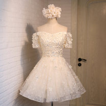 Dress / evening wear Wedding, adulthood, party, company annual meeting, performance Xs, s, m, l, XL, XXL, customized contact customer service plus fees Champagne, grey, pink Korean version Short skirt middle-waisted Fluffy skirt One shoulder Bandage Soft mesh lace Short sleeve flower Dream of Su He