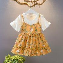 Dress other Princess Dress Broken flower female Other / other Other 100% 3 months M (80 cm), l (90 cm), XL (100 cm), XXL (110 cm)