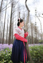 Custom made Hanfu Tang style half arm hemp bean garment with light cross collar, with a tie of autumn fragrance color, Tang style half arm with light cross collar, with a tie of watermelon red, cyan blue and cloud crane pattern skirt, 3 pieces in total, with cross collar upper Ru other