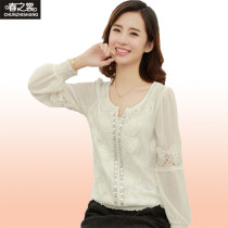 Lace / Chiffon Fall 2013 White black Long sleeve Wild Sleeve Conventional models Single Loose Round neck Pure color conventional 25-29 years old