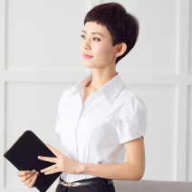 shirt white 3XL,4XL,5XL Summer of 2019 cotton 51% (inclusive) - 70% (inclusive) Short sleeve commute Polo collar Lotus leaf sleeve Solid color Self cultivation Korean version Button