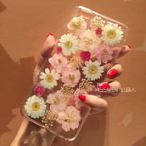 Mobile phone cover / case Other / other Simplicity Apple / apple iphone Protective shell TPU