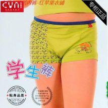 underpants Random Color M L XL male Chanyanock 2 pieces Viscose Middle waist Pants Pure color juvenile Recycled fabric above 95 Antibacterial Z-0106