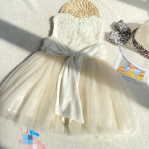 Dress Apricot female Other / other 100cm,110cm,120cm,130cm,140cm Other 100% summer princess Strapless skirt other other other 7, 8, 14, 3, 6, 2, 13, 11, 5, 4, 10, 9, 12 Chinese Mainland
