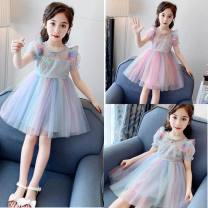 Dress Blue, pink female Other / other The recommended height is about 90cm for 100, 100cm for 110, 110cm for 120, 120cm for 130 and 130cm for 140 yards Other 100% princess Skirt / vest Netting Fluffy skirt