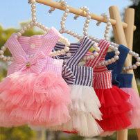 Pet clothing / raincoat currency Dress XS,S,M,L,XL,XXL Dotcom Online princess