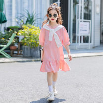 Dress Blue, pink female Other / other 120 cm, 120 cm, 120 cm, 120 cm, 120 cm, 120 cm, 120 cm, 120 cm, 120 cm, 120 cm, 120 cm Cotton 98% other 2% summer Korean version cotton Lotus leaf edge Class B