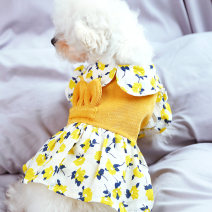 Pet clothing / raincoat currency Dress Weight is only for reference, please take the chest circumference as criterion, xs-chest 31cm back 21cm > 3-4kg s-chest 35cm back 26cm > 5-6kg m-chest 38cm back 31cm > 7-8kg l-chest 43cm back 34cm > 10-12kg xl-chest 51cm back 41cm > 13-16kg BB-HOUSE princess