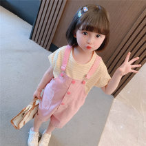 suit Other / other Pink, purple 90cm,100cm,110cm,120cm,130cm female summer Korean version Short sleeve + pants 2 pieces routine There are models in the real shooting Socket nothing Solid color cotton Class A Chinese Mainland