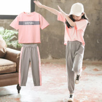 suit Luofeng Peach  female summer Korean version Short sleeve + pants 2 pieces Thin money There are models in the real shooting Socket nothing other Cotton blended fabric elder Expression of love LF-TK-965 Class B Cotton 95% polyurethane elastic fiber (spandex) 5% Summer 2020 Chinese Mainland