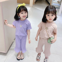 suit Other / other Purple, apricot 7(90cm),9(100cm),11(110cm),13(120cm),15(130cm) female summer Korean version Short sleeve + pants Socket nothing Solid color other F7181 2 years old, 3 years old, 4 years old, 5 years old, 6 years old Chinese Mainland