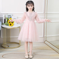 Dress Collection Plus priority delivery dm83029 dresses [pink] female Becosin 110cm 120cm 130cm 140cm 150cm 160cm Other 100% spring and autumn princess Long sleeves Solid color other A-line skirt DM83029 Class B Spring 2021 Chinese Mainland Zhejiang Province Huzhou City