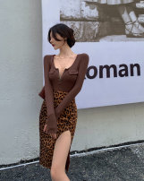 Fashion suit Spring 2021 S. M, l, average size Leopard skirt, coffee T-shirt Other / other 31% (inclusive) - 50% (inclusive)