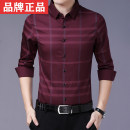 shirt Fashion City Bonin 165,170,175,180,185 Red, saffron, saffron, dark green routine Pointed collar (regular) Long sleeves Self cultivation Other leisure spring 73-73508C youth Polyester 100% Business Casual lattice Color woven fabric No iron treatment Button decoration