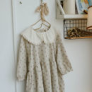 Dress Spring 2021 Hemp long sleeve, medium sleeve Average size Mid length dress singleton  Long sleeves Loose waist Decor A-line skirt Type A cotton