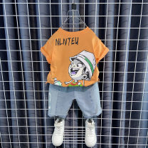 suit Other / other Orange, white 90cm,100cm,110cm,120cm,130cm,140cm,150cm male summer motion Short sleeve + pants 2 pieces Thin money No model Socket nothing Solid color cotton children Expression of love Class B Cotton 100% Chinese Mainland