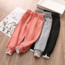 trousers Shell element female 90cm,100cm,110cm,120cm,130cm,140cm,150cm Grey, black, pink spring and autumn trousers Sports pants Leather belt Other 100% kzd313 Class B 2, 3, 4, 5, 6, 8, 7, 9, 10, 11, 12, 13, 14