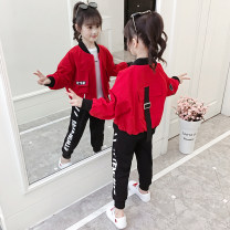 suit 110cm,120cm,130cm,140cm,150cm,160cm female spring and autumn Korean version Long sleeve + pants 2 pieces routine There are models in the real shooting Zipper shirt nothing other cotton children Giving presents at school Class B Other 100% 2, 3, 4, 5, 6, 7, 8, 9, 10, 11, 12, 13, 14 years old
