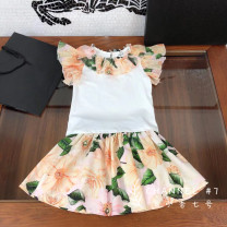 suit Other / other Red, apricot 110cm,120cm,130cm,140cm,150cm,160cm female summer fresh Short sleeve + skirt 2 pieces Thin money Socket Broken flowers cotton Other 100% 7, 8, 3, 6, 11, 5, 4, 10, 9, 12 Chinese Mainland