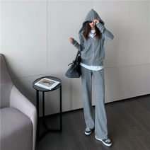 Fashion suit Spring 2021 S M L XL Grey coat black coat grey coat + grey trousers black coat + black trousers 18-25 years old Dixi 31% (inclusive) - 50% (inclusive) nylon Other 100%