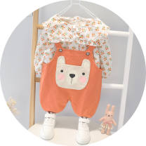 suit Other / other female spring and autumn leisure time Two piece set routine Socket Broken flowers cotton other 3 years old