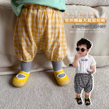 trousers A Xiaoxuan neutral Size 66, size 74, size 80 (model small nine), Size 90, size 100, Wu shoot more new products, pay attention to VX: a1xxyt Pre sale 4.27 for fine checked, yellow, black and white checked, and 4.27 for yellow summer trousers leisure time There are models in the real shooting