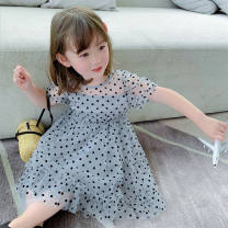 Outdoor casual clothes Tagkita / she and others children Blue, apricot 51-100 yuan 80cm,90cm,100cm,110cm,120cm,130cm other summer