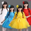 Children's performance clothes female 100cm,110cm,120cm,130cm,140cm,150cm,160cm,170cm Other / other 2 years old princess