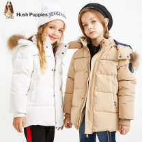 Down Jackets 105cm 110cm 120cm 130cm 140cm 150cm 160cm 170cm 85% White duck down Children, women and men Hush Puppies / Hush Puppies polyester Medium length Detachable cap Zipper shirt Solid color Class C Polyester 100% Polyester 100% Winter of 2019 leisure time