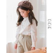 shirt white cicie female 110cm,100cm,150cm,140cm,130cm,120cm spring and autumn Long sleeves Korean version Solid color Pure cotton (100% cotton content) Lapel crew neck Class B