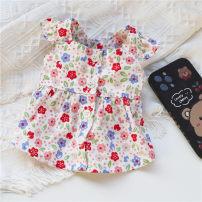 Pet clothing / raincoat currency Dress XS,S,M,L,XL,XXL,XXXL,xxs Weipet town princess White (scheduled for 10-15 days)