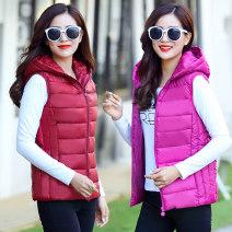 Vest Winter 2017 EN 619 -- pink, en 619 -- maroon, en 619 -- dark gray, en 619 -- black, en 619 -- dark purple, en 619 -- dark blue XL (recommended 80-100 kg), 2XL (recommended 100-120 kg), 3XL (recommended 120-135 kg), 4XL (recommended 135-150 kg), 5XL (recommended 150-165 kg) Detachable cap zipper